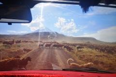 Get closer to Ararat ;-)