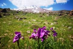 Mt.Damawand (5,610 masl), Iran